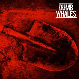 Dumb Whales  - William
