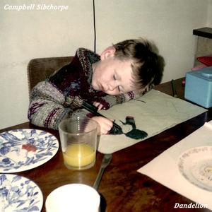 Campbell Sibthorpe - Dandelion