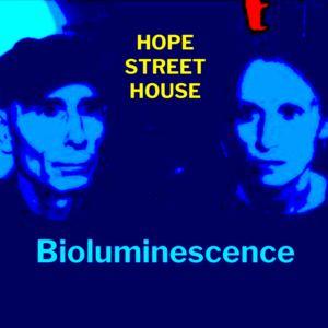 Hope Street House - Bioluminescence