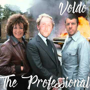 Voldo - The Professional (Hey Marcel)