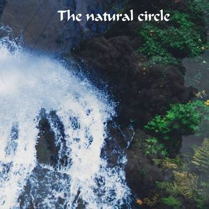Michele Zara - The natural circle