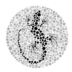 L/zard - Colour Blind