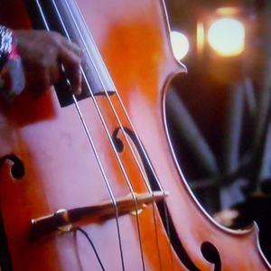 Digital Music - Funky Bass