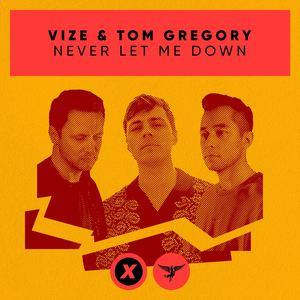 VIZE & Tom Gregory