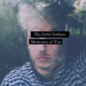 The Joyful Sadness - Memories of You