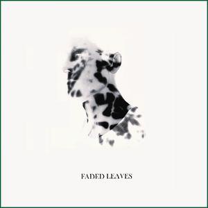 Jared Celosse - Faded Leaves