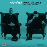 PBH & Jack ft. Cammie Robinson - What Is Love