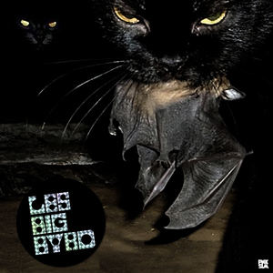 Les Big Byrd - Roofied Angels