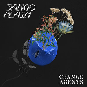Jango Flash  - Change Agents