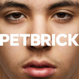 Petbrick - Horse