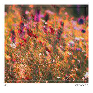 KYOTI - Campion