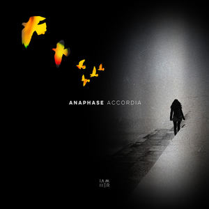Anaphase - Accordia