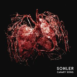 SOHLER - Canary Song