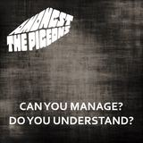 Amongst The Pigeons - Can You Manage? Do You Understand?