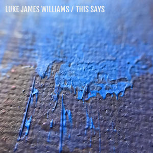 Luke James Williams - This Says