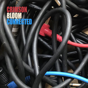 Crimson Bloom - Connected