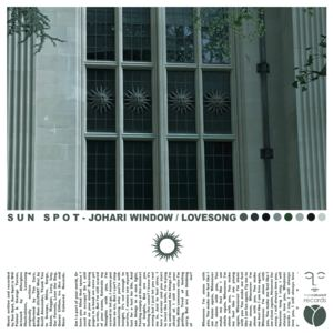 Sun Spot - JOHARI WINDOW