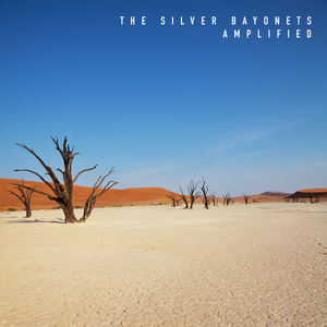 The Silver Bayonets - Amplified