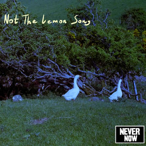Never Now - Not the Lemon Song