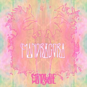 Mandrake Handshake - Mandragora