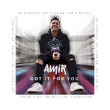 Amir - Got it for You