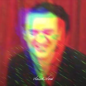 Tim Arnold - Weird Now