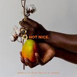 MckNasty ft Kojey Radical & Laudable - Not Nice