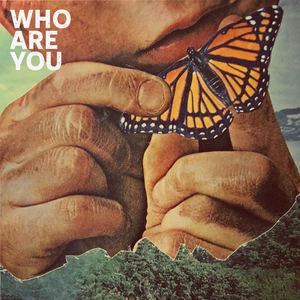 Kindsight - Who Are You
