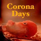 Flood for the Famine - Corona Days