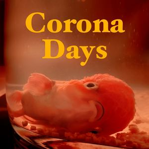 Flood for the Famine - Corona Days