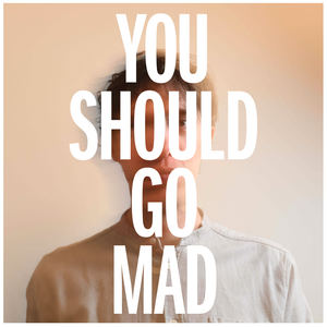 A.S. Fanning - You Should Go Mad