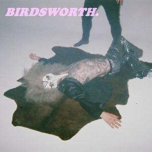 Birdsworth - Mango