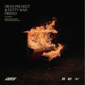 Drax Project X Fetty Wap