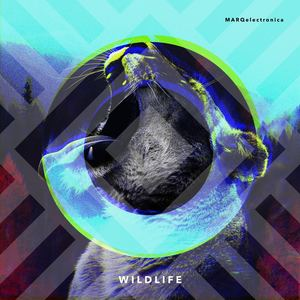 MARQelectronica - Wildlife