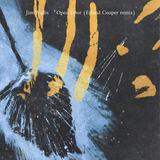 Jim Wallis - Europa Pt I (Max Cooper Remix)