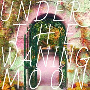 Amii Dawes - Under the Waning Moon
