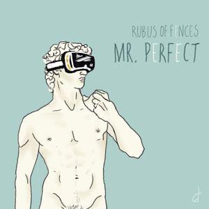 Rubus Of Fences - Mr. Perfect
