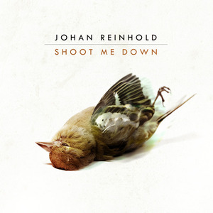 Johan Reinhold - Shoot Me Down