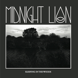 Midnight Lion - Sleeping In The Woods