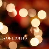 Rose Parade - The Sea Of Lights