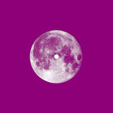 Fairewell - Wild Meadow/I've Been Locked Away (Team Ghost Remix)
