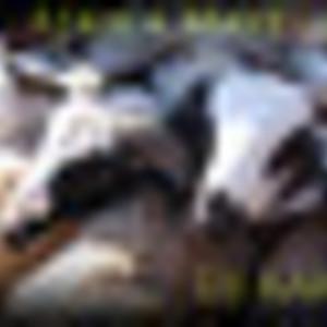 djkarim - Africa Maye original edit