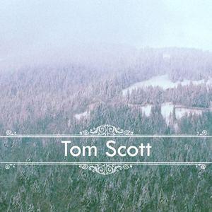 Tom Scott - The Good Love