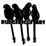 Budgeriguitars