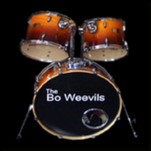 the bo weevils - Dont change a thing