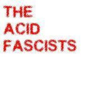 Acid Fascists - Crash Test Dummy