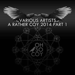 Various Artists - Jason Bay - Too Hard