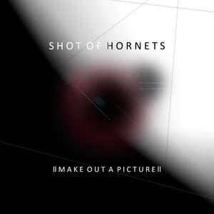 Shot Of Hornets