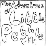 Little Pebble - Sense to the Theory