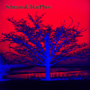 Schram and MacPhee - Mist on the Moors ( Instrumental )